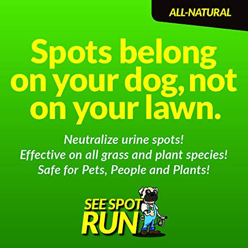 See-Spot-Run