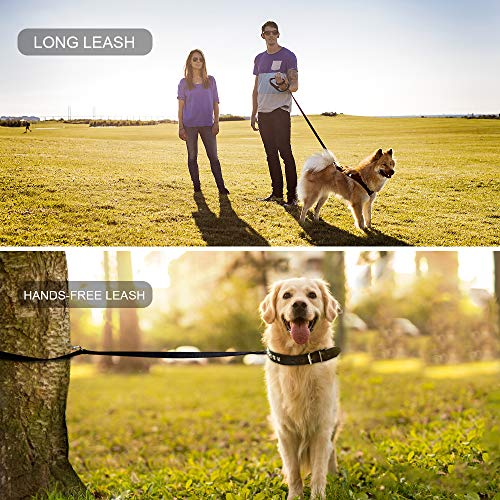 oneisall Hands Free Dog Leash,Multifunctional Dog Training Leads,8ft Nylon Double Leash for Puppy,Small & Large Dogs 7