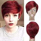 MISSWIG Wine Red Anime Cosplay Layered Short Straight Hair Natural Wig Heat Resistant Fiber Party Pixie Cut Wigs for Women