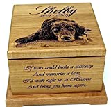 Pet Memorial urn Pet Cremation Urn Memorial Gifts Custom Urn Personalized Dog Keepsake Urn Cat Urn Cat Memorial Pet Memorial Box