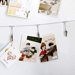 YES Time Multi-Purpose Steel Wall Hanging Display Cable Wire Rod with 12 Clips for Hanging Photos Notes and Artworks (Alligator Clip)