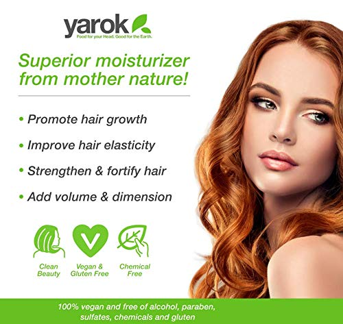 Yarok Feed Your Volume Shampoo, 16oz, Made from Aloe Vera, Macadamia Nut, Primrose, and Grapeseed Oils, 100% Vegan, Free from Gluten, Sulfate, Alcohol & Paraben, Cruelty-Free 3