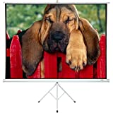 Portable Projector Screen with Stand 100' - Projector Screen Pull Down and Projection Screen with Stand - This Portable Screen is The Best Outdoor Movie Screen with Stand - Indoor and Outdoor Screen