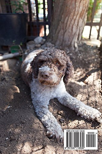 The-Lagotto-Romagnolo-Dog-Journal-150-page-lined-notebookdiary