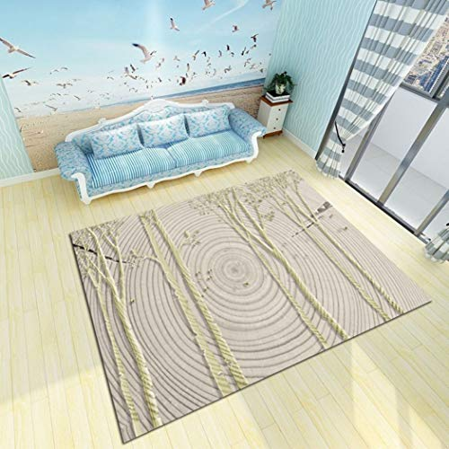 Living Room Modern Mats Coffee Table Carpet Bedroom Feather Rugs Mats Blanket 3D Picture Vloerkleed Soft