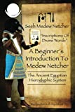 A Beginner's Introduction To Medew Netcher - The Ancient Egyptian Hieroglyphic System