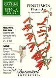 Penstemon Firecracker Seed