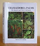 Chamaedorea Palms the Species and Their Cultivation