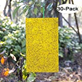 Kensizer 30-Pack Dual-Sided Yellow Sticky Traps for Flying Plant Insect Like Fungus Gnats, Whiteflies, Aphids, Leaf Miners, Thrips, Other Flying Plant Insects - 6x8 Inches, Twist Ties Included