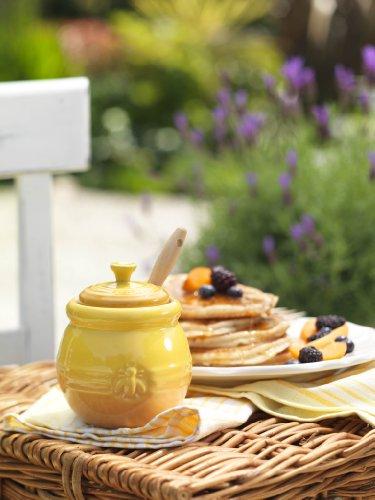Le Creuset Stoneware Honey Dipper