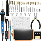 Wood Burning Kit,HANDSKIT Woodburning Soldering Iron Adjustable Temperature Pyrography Wood Burning Pen 45 Pieces Leather Craft Wood Embossing Carving Tools Set with ON/Off Switch