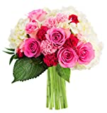 KaBloom Let Them Eat Cake Bouquet of Pink Roses and White Hydrangeas