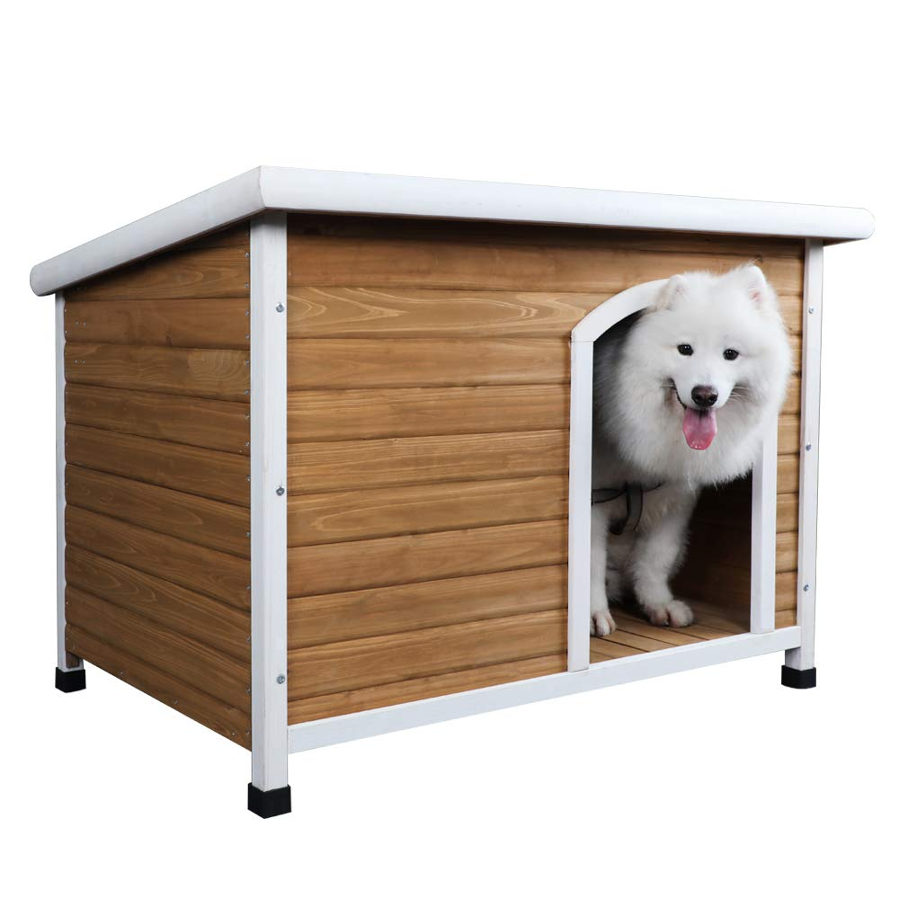 Best Dog House