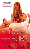Slow Burn: A Driven Novel (The Driven Series)