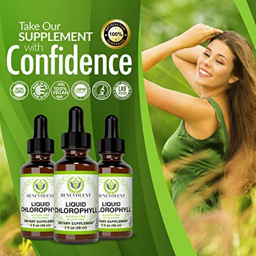 Chlorophyll Liquid Drops – Energy Boost | Immune System Support | Internal Deodorant | Altitude Sickness. Premium Quality – 100% Natural, Potent, Minty Taste, 2X Absorption. Alcohol and Gluten Free. 6