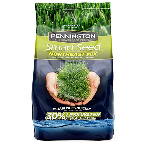 Pennington 100526638 Smart Seed Northeast Mix Grass Seed, 3 LB