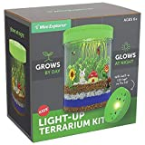 Mini Explorer Light-up Terrarium Kit for Kids with LED Light on Lid | Create Your Own Customized Mini Garden in a Jar That Glows at Night | Great Science Kits Gifts for Children | Kids Toys