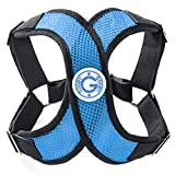 Gooby - X Harness, Small Dog Choke Free Step-in Harness with Synthetic Lambskin Soft Strap, Sky Blue, Medium