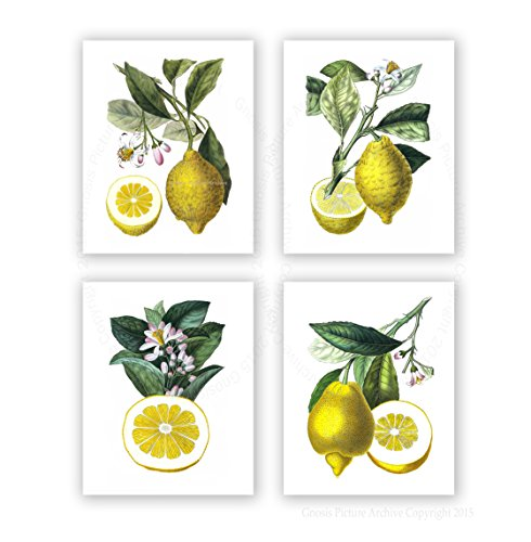Purple And Yellow Kitchen Wall Art Unframed Kitchen: Playful, Fun And Popular Kitchen Fruit Wall Decor