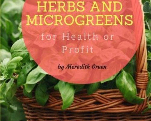 Top 10 best growing media for microgreens best of 2018 for Best growing medium for microgreens