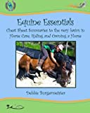 Product review for Equine Essentials: Cheat Sheet Summaries to the very basics in  Horse Care, Riding and Owning a Horse