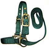Product review for Hamilton Sheep Show Halter with Lead, 3/4-Inch by 5-Feet, Dark Green