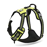 Chai's Choice Best Outdoor Adventure Dog Harness. 3M Reflective Vest with Two Leash Attachments. Caution - Please Measure Dog Before Ordering! Matching Leash and Collar Available (Large, Lemon Lime)