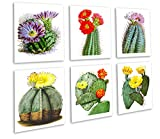 Cactus Flowers Southwestern Decor Set of 6 Unframed Botanical Illustration Wall Art Prints