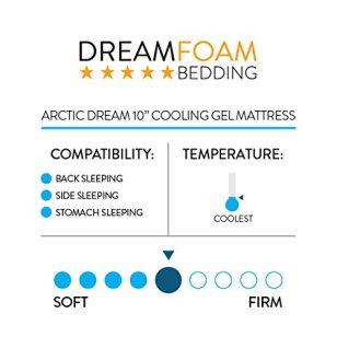 Arctic Dreams 10