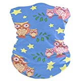 Owls Sitting On A Tree BranchBalaclava Womens Headband Scarf Mens Bandana,Muffler,Neck Gaiter,Magic,Hatliner Tube