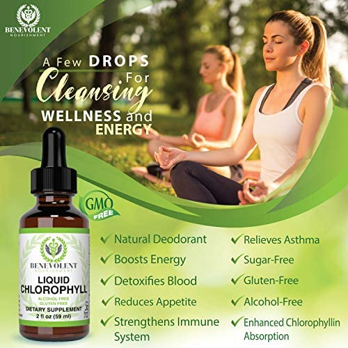 Chlorophyll Liquid Drops – Energy Boost | Immune System Support | Internal Deodorant | Altitude Sickness. Premium Quality – 100% Natural, Potent, Minty Taste, 2X Absorption. Alcohol and Gluten Free. 4