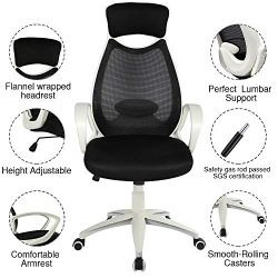 Furious Office Chair, High Back Mesh Office Computer Swivel Desk Task Chair, Ergonomic Executive Chair with Armrests, Lumbar Support and Rollerblade Wheels White