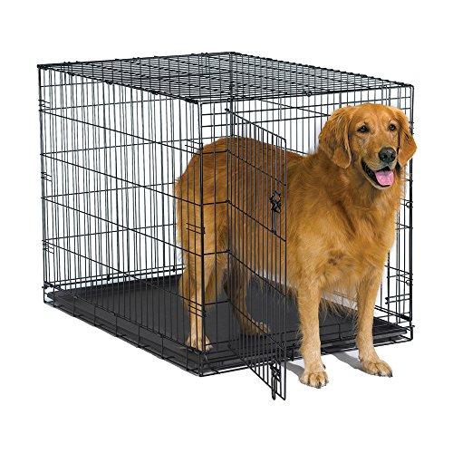 New World 42' Folding Metal Dog Crate, Includes Leak-Proof Plastic Tray; Dog...