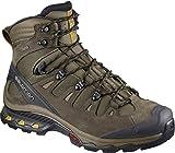 Salomon Men's Quest 4D 3 GTX Backpacking Boots, Wren/Bungee Cord/Green Sulphur, 11