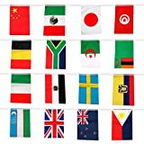 41 Feet International String Flags, Hanging Bunting Pennant Banner 50 Countries Flags World Flags (8.2'' x 5.5'')