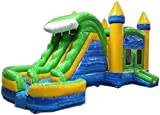Commercial Grade 29 Foot Blue & Green Helix Wet/Dry Combo Bounce House Inflatable