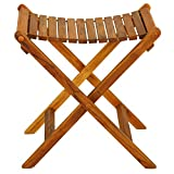 Product review for Bare Decor Wyatt Folding Stool for Indoor or Outdoor Use, Teak
