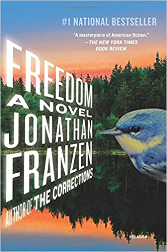 Image result for franzen books