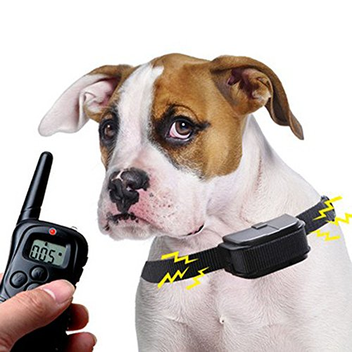 Winterworm Rechargeable 300M LCD Electronic Remote Control Dog Training Collar with 0-100 levels Static and Vibration Modes for 1 small/medium size dog 1
