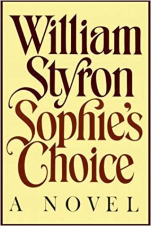 Afbeeldingsresultaat voor sophie's choice book
