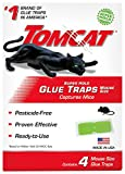 Tomcat Super Hold Glue Traps Mouse Size - 4 Traps | Captures Mice | Also Used for Cockroaches, Scorpions, Spiders & Many Other Pests