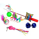 GDPet 10 Piece Including Cat Teaser Wand Interactive Feather Toy Fluffy Mouse Mylar Crinkle Balls Catnip Pillow for Kitten/Kitty