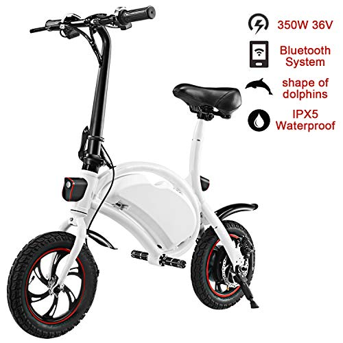 shaofu Folding Electric Bicycle