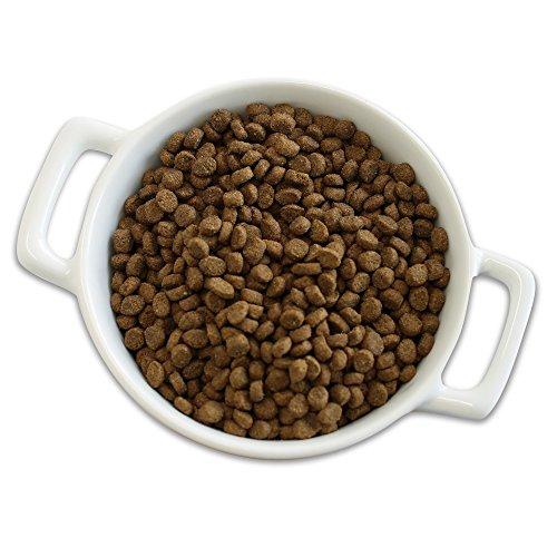 Merrick Purrfect Bistro Grain Free Real Chicken Adult Dry Cat Food, 12 Lbs.