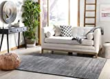 Safavieh Vision Collection VSN606D Grey Area Rug (4' x 6')