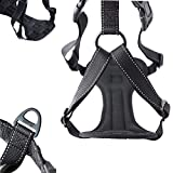 Mighty Paw Car Dog Harness, Vehicle Safety Harness with Adjustable Straps and Soft Padding, Doubles as a Standard Harness with a No Pull Front Leash Attachment