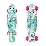 wonnv Retro Mini Cruiser 22 inch Complete Skateboard (Design)