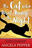 The Cat Who Went Bump in the Night (Paranormal Cozy Mystery) (Eli Carter & the Ghost Hackers Paranormal Mysteries Book 1)