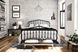 Novogratz 4044439N Bushwick Metal Bed, King, Grey