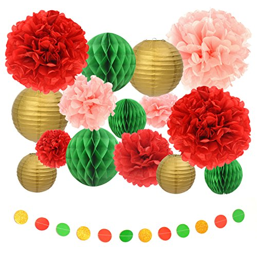 Tissue paper pom poms 16pcs of assorted paper flower decorations tissue paper pom mightylinksfo Choice Image